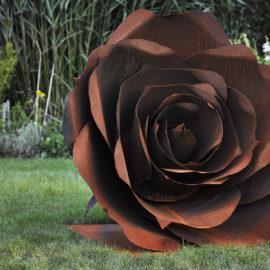 flora_rose